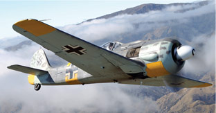 Butcher Bird FW190